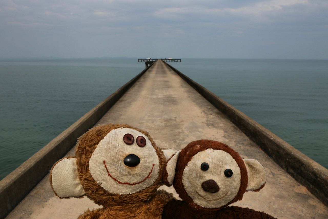 Travelling Monkeys @